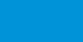 rvi_logo